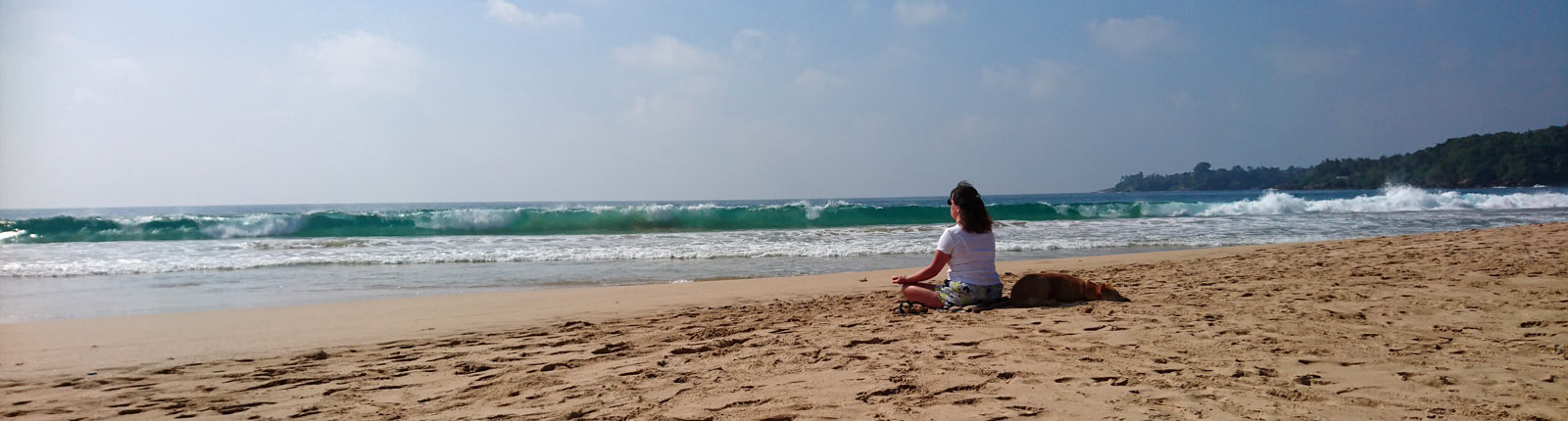 Booking & Enquiry form for mindfulness courses with Insightfulness