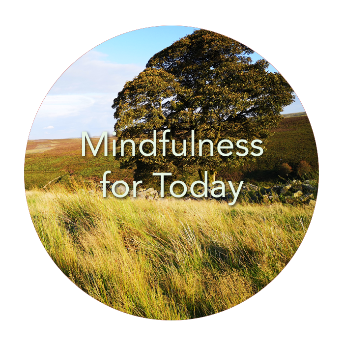 Mindfulness for the 21st Century